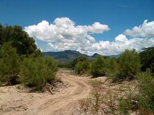Road through land.